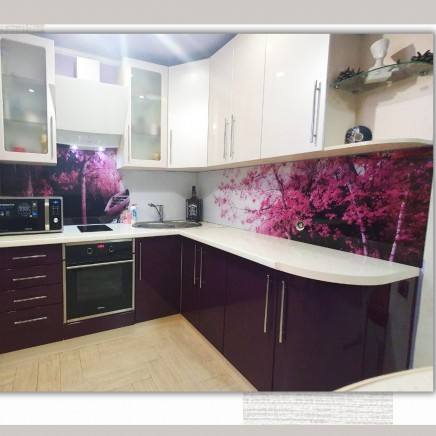 фартук на кухню из стекла фото, скинали фото, стеклянный фартук на кухню фото, кухонный фартук фото 2110201913