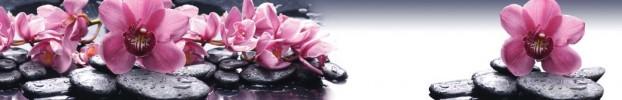 3000 кухонный фартук Скинали Орхидеи, фартук для кухни Скинали Орхидеи, стеклянный фартук Скинали Орхидеи, фартук на кухню Скинали Орхидеи