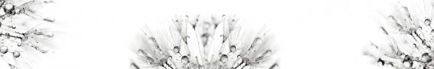 2406202018 кухонний фартухСкіналі: Кульбаби, фартух для кухніСкіналі: Кульбаби, скляний фартухСкіналі: Кульбаби, фартух на кухнюСкіналі: Кульбаби