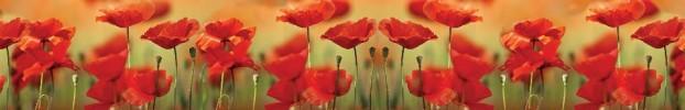 0907202141 кухонный фартук Скинали Цветы, фартук для кухни Скинали Цветы, стеклянный фартук Скинали Цветы, фартук на кухню Скинали Цветы