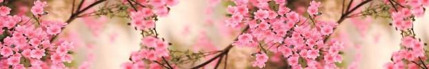 9090720222 кухонный фартук Скинали Цветы, фартук для кухни Скинали Цветы, стеклянный фартук Скинали Цветы, фартук на кухню Скинали Цветы