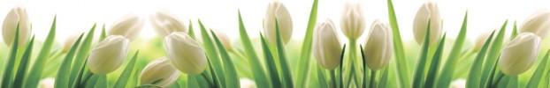 090720212 кухонный фартук Скинали Цветы, фартук для кухни Скинали Цветы, стеклянный фартук Скинали Цветы, фартук на кухню Скинали Цветы