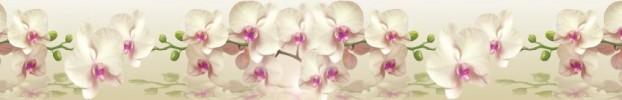 1603202116 кухонный фартук Скинали Орхидеи, фартук для кухни Скинали Орхидеи, стеклянный фартук Скинали Орхидеи, фартук на кухню Скинали Орхидеи