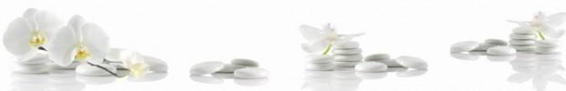 9755 кухонный фартук Скинали Орхидеи, фартук для кухни Скинали Орхидеи, стеклянный фартук Скинали Орхидеи, фартук на кухню Скинали Орхидеи