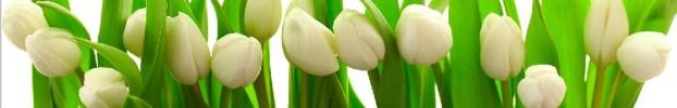 090720213 кухонный фартук Скинали Цветы, фартук для кухни Скинали Цветы, стеклянный фартук Скинали Цветы, фартук на кухню Скинали Цветы