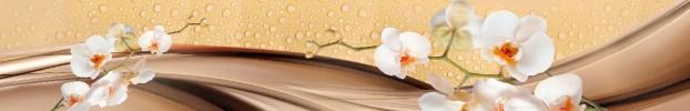 15638 кухонный фартук Скинали Орхидеи, фартук для кухни Скинали Орхидеи, стеклянный фартук Скинали Орхидеи, фартук на кухню Скинали Орхидеи