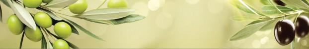 2658 кухонний фартухСкіналі: Їжа та напої, фартух для кухніСкіналі: Їжа та напої, скляний фартухСкіналі: Їжа та напої, фартух на кухнюСкіналі: Їжа та напої