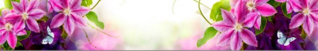 170320204 кухонный фартук Скинали Цветы, фартук для кухни Скинали Цветы, стеклянный фартук Скинали Цветы, фартук на кухню Скинали Цветы