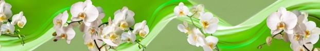 16104 кухонный фартук Скинали Орхидеи, фартук для кухни Скинали Орхидеи, стеклянный фартук Скинали Орхидеи, фартук на кухню Скинали Орхидеи