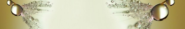 290620206 кухонний фартухСкіналі: Кульбаби, фартух для кухніСкіналі: Кульбаби, скляний фартухСкіналі: Кульбаби, фартух на кухнюСкіналі: Кульбаби