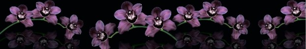 210720212 кухонный фартук Скинали Орхидеи, фартук для кухни Скинали Орхидеи, стеклянный фартук Скинали Орхидеи, фартук на кухню Скинали Орхидеи