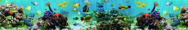 9648 кухонный фартук Скинали аквариум, фартук для кухни Скинали аквариум, стеклянный фартук Скинали аквариум, фартук на кухню Скинали аквариум