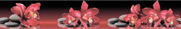 190720213 кухонный фартук Скинали Орхидеи, фартук для кухни Скинали Орхидеи, стеклянный фартук Скинали Орхидеи, фартук на кухню Скинали Орхидеи