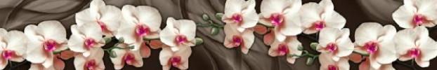 3285 кухонний фартухСкіналі: Орхідеї, фартух для кухніСкіналі: Орхідеї, скляний фартухСкіналі: Орхідеї, фартух на кухнюСкіналі: Орхідеї