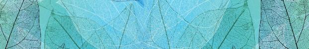 090820212 кухонний фартухСкіналі: Природа, фартух для кухніСкіналі: Природа, скляний фартухСкіналі: Природа, фартух на кухнюСкіналі: Природа