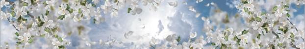 1603202127 кухонный фартук Скинали Цветы, фартук для кухни Скинали Цветы, стеклянный фартук Скинали Цветы, фартук на кухню Скинали Цветы
