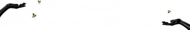 2310202018 кухонний фартухСкіналі: Арт, фартух для кухніСкіналі: Арт, скляний фартухСкіналі: Арт, фартух на кухнюСкіналі: Арт