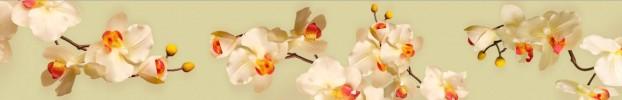 2554 кухонный фартук Скинали Орхидеи, фартук для кухни Скинали Орхидеи, стеклянный фартук Скинали Орхидеи, фартук на кухню Скинали Орхидеи