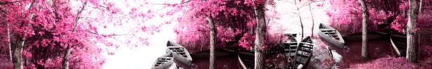 17637 кухонний фартухСкіналі під дерево, фартух для кухніСкіналі під дерево, скляний фартухСкіналі під дерево, фартух на кухнюСкіналі під дерево