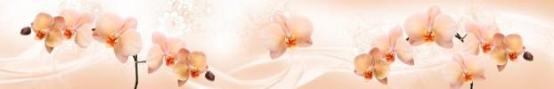 4176 кухонний фартухСкіналі: Орхідеї, фартух для кухніСкіналі: Орхідеї, скляний фартухСкіналі: Орхідеї, фартух на кухнюСкіналі: Орхідеї