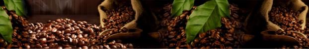 26022020 кухонний фартухСкіналі: Кава, фартух для кухніСкіналі: Кава, скляний фартухСкіналі: Кава, фартух на кухнюСкіналі: Кава