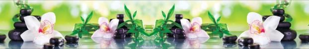 160320204 кухонный фартук Скинали Орхидеи, фартук для кухни Скинали Орхидеи, стеклянный фартук Скинали Орхидеи, фартук на кухню Скинали Орхидеи