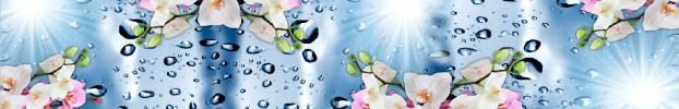 020720209 кухонный фартук Скинали Орхидеи, фартук для кухни Скинали Орхидеи, стеклянный фартук Скинали Орхидеи, фартук на кухню Скинали Орхидеи