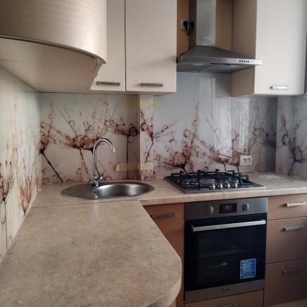 фартук на кухню из стекла фото, скинали фото, стеклянный фартук на кухню фото, кухонный фартук фото 16568
